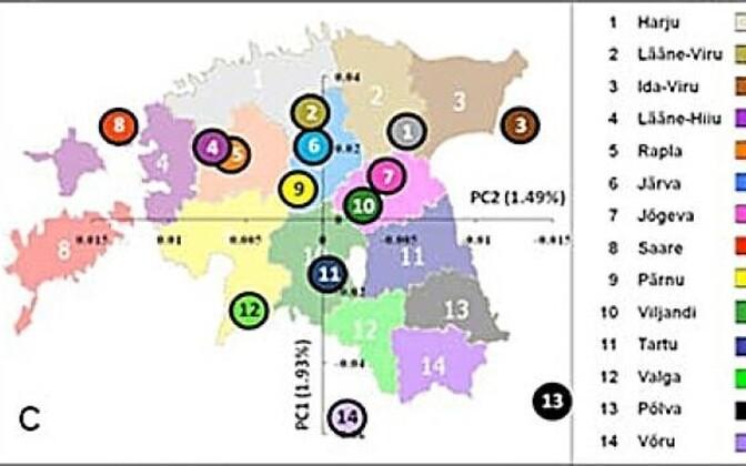 Eestlaste geenid joonistasid Eesti
