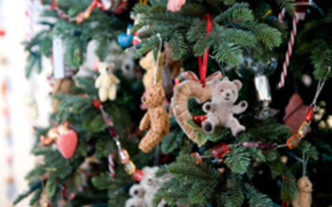 Jaanauri alguses jõulukuusel okkad juba pudenevad.