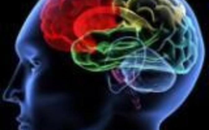 Kui suur on eestlaste keskmine IQ?