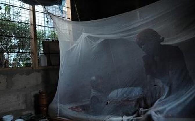 Tansaanlanna ja tema pisike poeg moskiitovõrgu all.