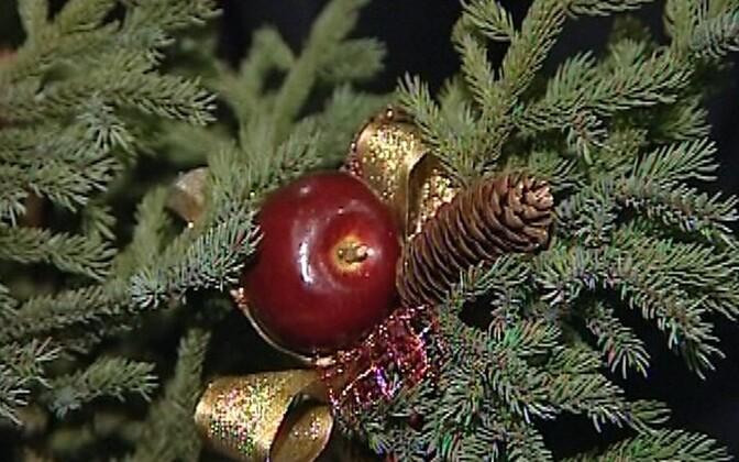Latvia Claims Original Christmas Tree Culture Err