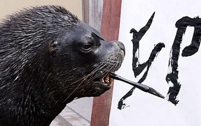 Kirjaoskust demonstreeriv merilõvi.