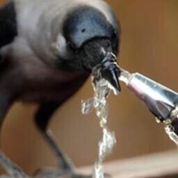 В Иллука и Ийзаку провели водопровод.