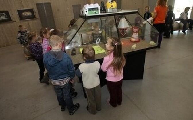 6f7c1841e82 Ahhaa uut teaduskeskust on külastanud juba üle 100 000 inimese ...