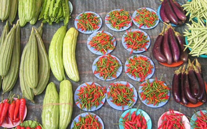 Kaunviljade puhul on mahe- ja tavapõllundust rakendades saagivahe juba loomulikult väiksem.
