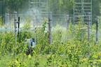 Kuidas mõjub soojenev kliima Eesti metsale?
