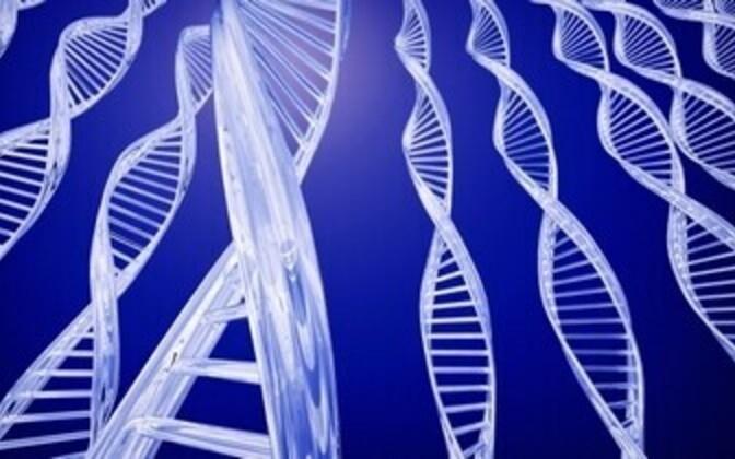 TÜ arvutiteadlaste loodud veebirakendus lihtsustab geeniteadlaste tööd