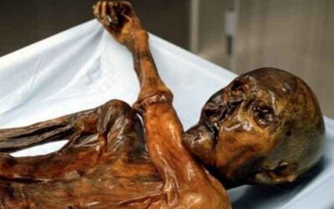 Jäämees Ötzi suudab ikka veel üllatada.