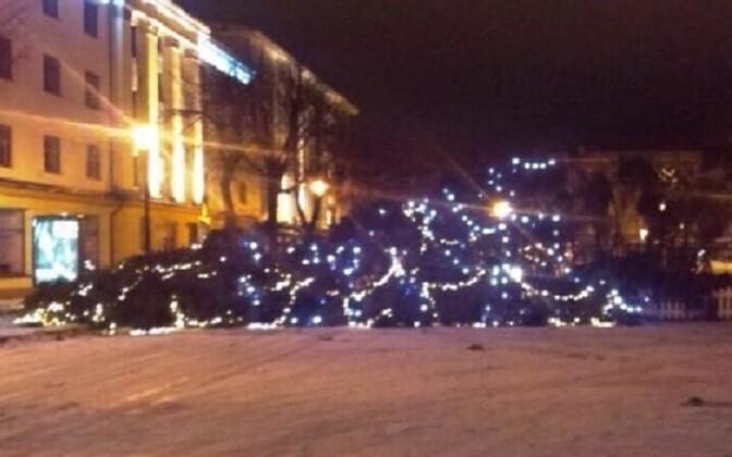 В Нарве упала новогодняя елка.