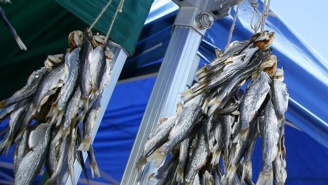что такое рыболовная артель