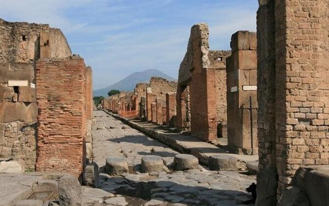 Iidse Pompei elanikud sõid kaelkirjakuliha
