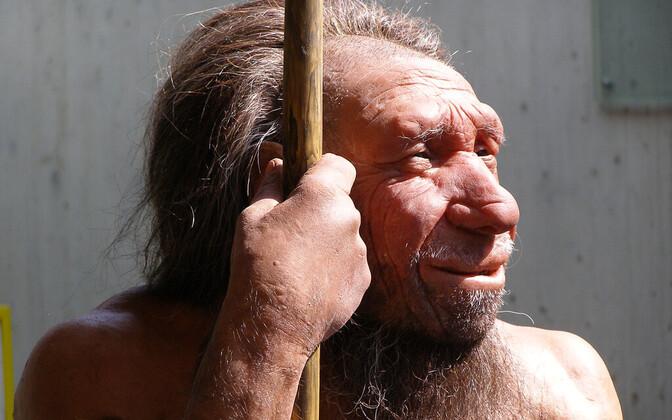 Neandertallase rekonstruktsioon.