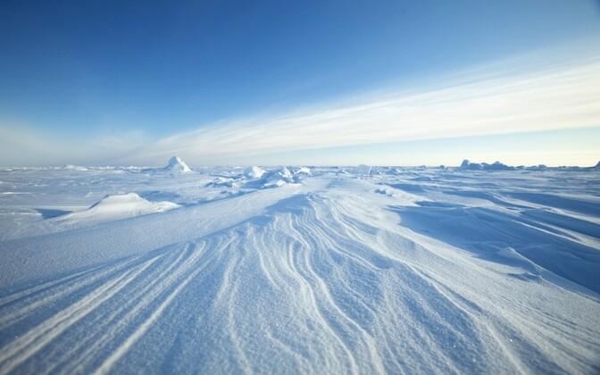 Arktika jääväljad