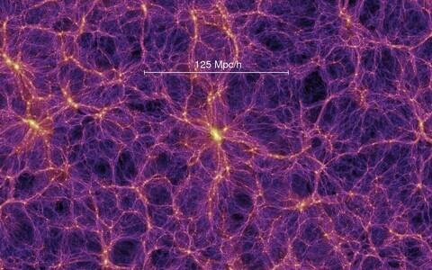 Tumeaine võrgustik arvutisimulatsioonis.