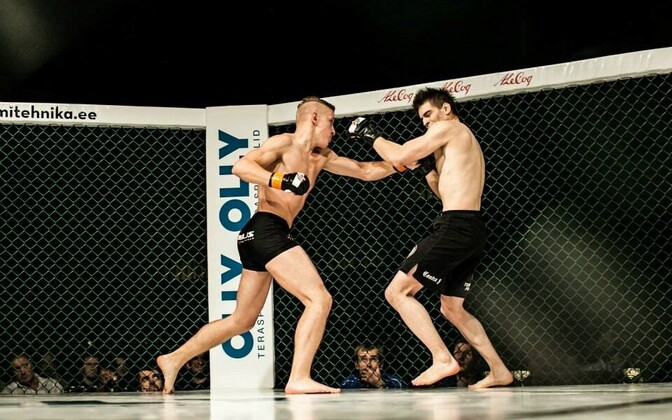 Sportlik vabavõitlus