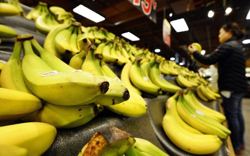 Banaanid