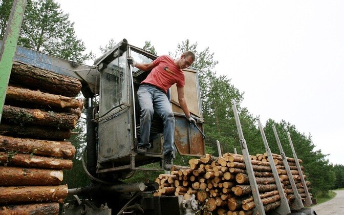 Wood and products of wood make up a significant share of Estonia's exports.