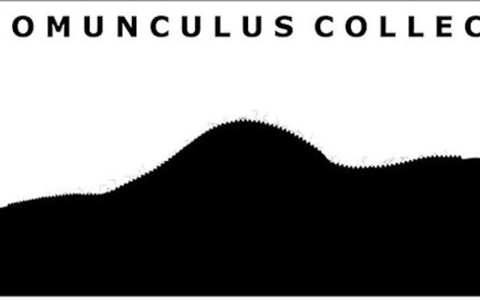 The Homunculus Collection