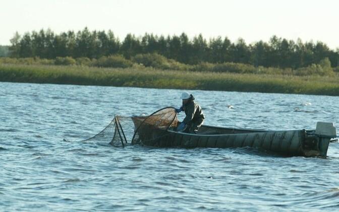 Kõige rohkem tuvastati esimesel poolaastal kalapüügirikkumisi.