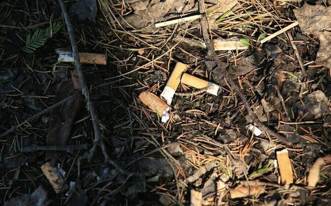 Maapiirkonna elanikel kulub sigarettidele rohkem raha kui tallinlastel.