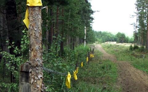 Eesti-Vene piiririba