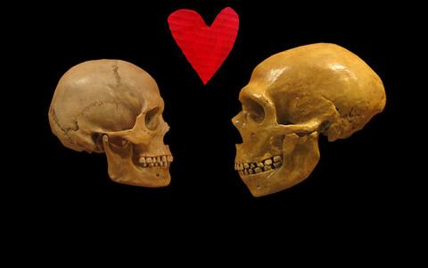 Nüüdisinimese ja neandertallase kolju.