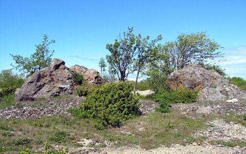 Kraatrist väljapaiskunud neugrundbretša rahnud Osmussaarel ehk