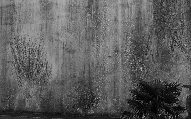 """LILLI-KRÕÕT REPNAU Draakoni galeriis isiknäituse """"Kahevahel"""""""