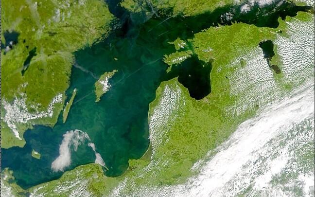 Fütoplanktoni poolt põhjustatud veeõitseng Läänemeres, 3. juuli 2001.