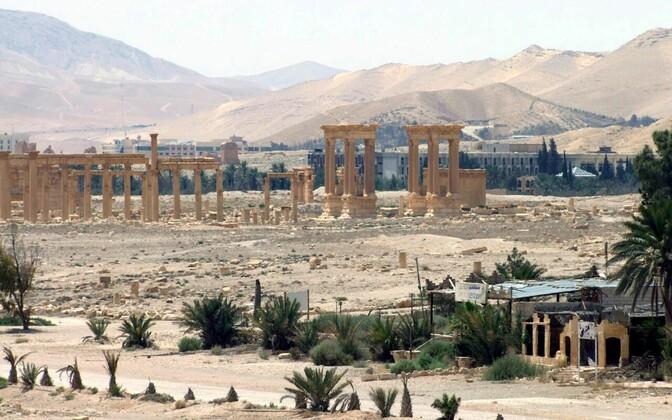 Palmyra linna varemed.