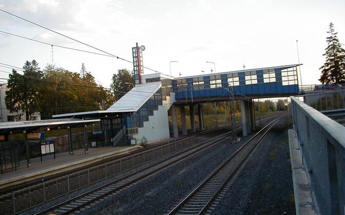 Tapanila rongipeatus
