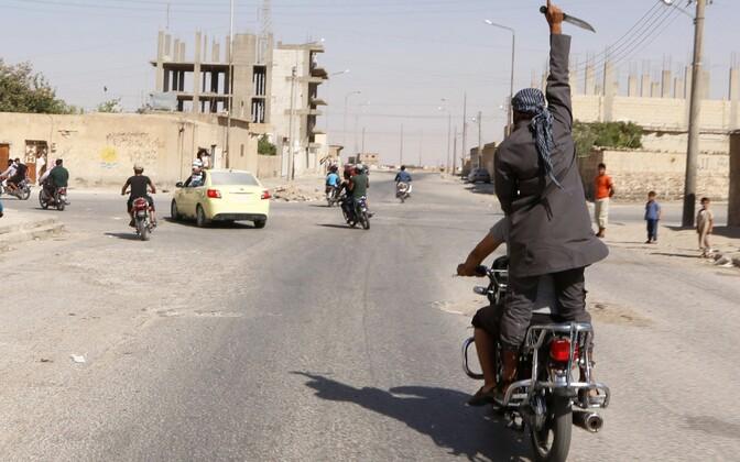 Juubeldav Islamiriigi võitleja Tabqa linnas 2014. aasta augustis