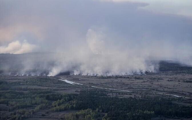 Tšornobõli maastikupõleng 2015. aasta aprillis