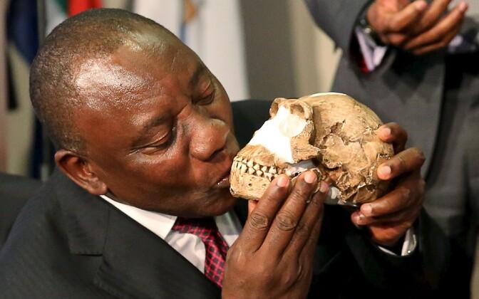 LAV-i asepresident Cyril Ramaphosa suudleb Homo naledi kolba rekonstruktsiooni.