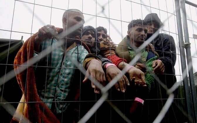 Põgenikud näitavad Austria-Ungari piiril randme ümber kleebitud ID-paelasid.