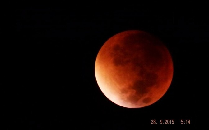 Blood moon photographed from Sindi, Pärnu County