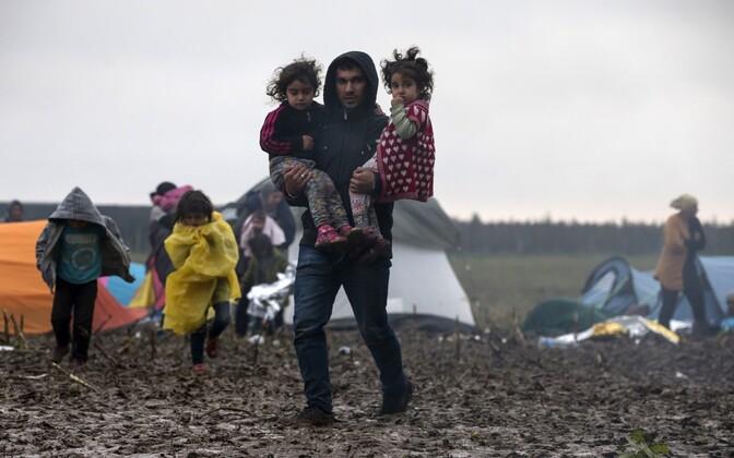 Kahe lapsega asüülitaotleja ootab Horvaatia piiri äärses Berkasovo laagris, et minna Serbiast edasi põhja poole.