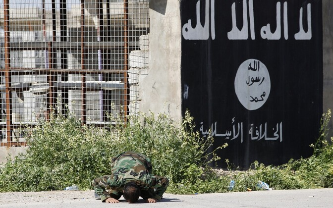 Флаг ИГИЛ на стене. Иллюстративная фотография.