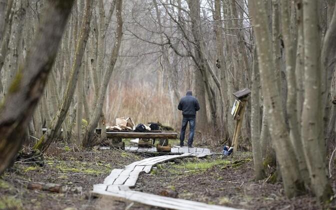 Зона отдыха на Ореховой горке в Нарве, где было обнаружено тело 14-летней Дарьи.