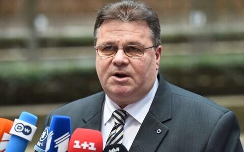 Министр иностранных дел Линас Линкявичюс.