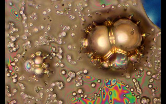 I koht kategoorias mikroskoobipildid: EMImBF4 ioonse vedeliku lagunemine kõrge pinge all.