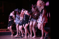 Burlesque Newcomers Shownight