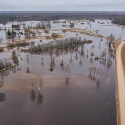 Üleujutus Soomaa rahvuspargis 2016. aastal.