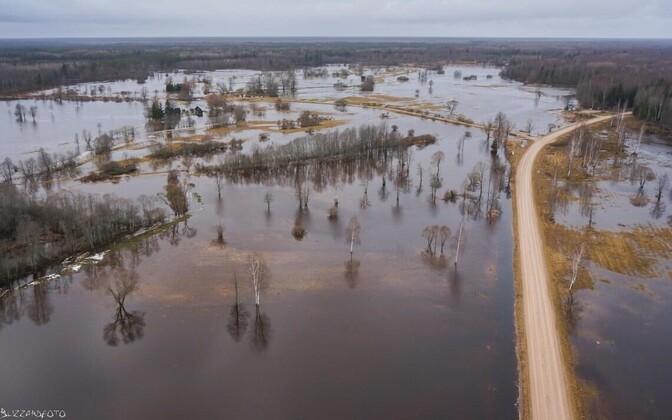 Soomaa National Park, first flood of 2016
