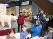 Jääkarupäev Narvas
