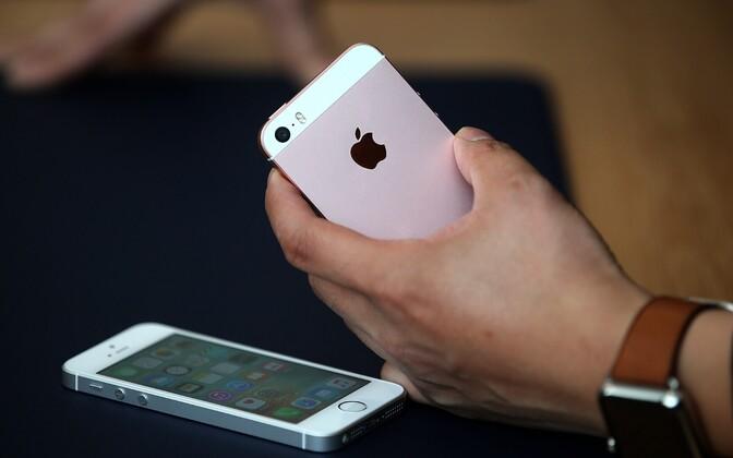 Согласно обвинению, Мяндла присвоил два новых iPhone и фотоаппарат на общую сумму более 1600 евро