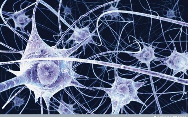 Neuronid kunstniku nägemuses.