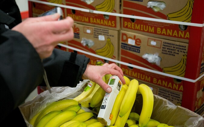 Bananas imported from Ecuador, a member of South American sub-regional bloc Mercosur.