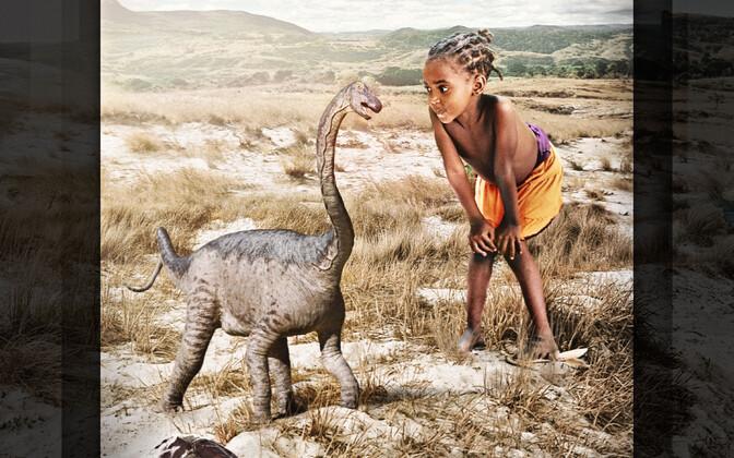 Imikueas rapetosaurus võrreldes tüüpilise saurusega.
