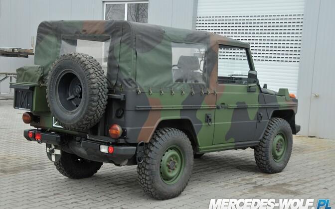 MB 250GD